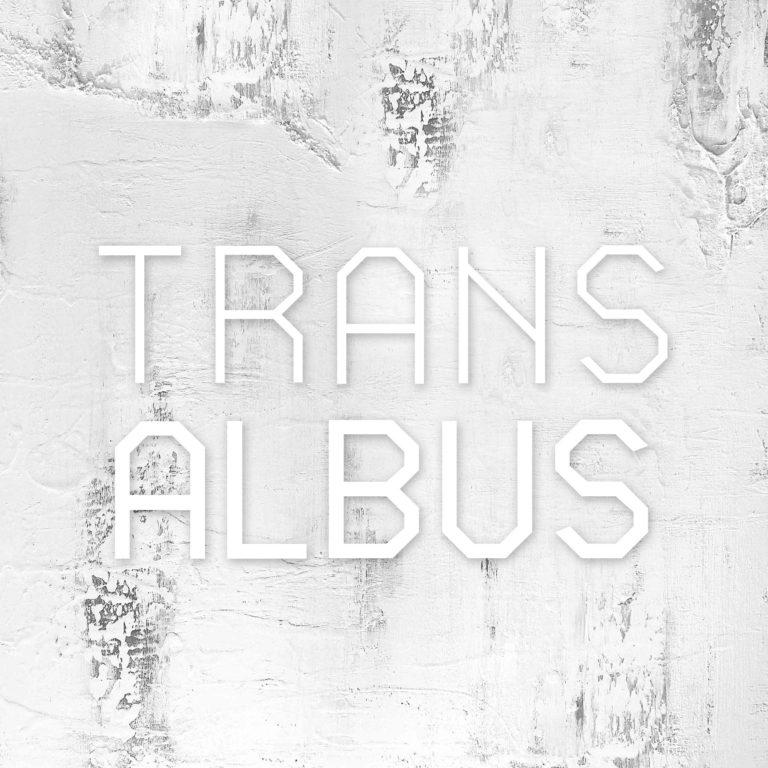 Imagen del proyecto Transalbus